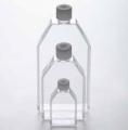德国Eppendorf 艾本德 细胞培养瓶, T-150, TC 处理 货号:0030712102