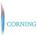 美国Corning康宁4154枪头,200UL,无色,加长,低吸附,10层盒装,未灭菌,960/3840